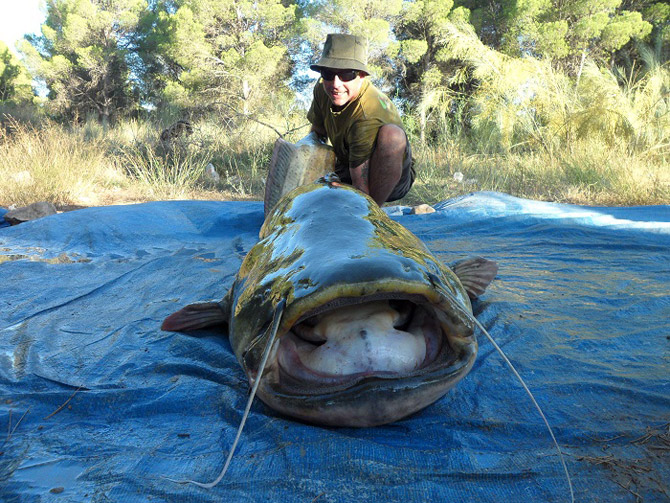 работа рыбаком за рубежом