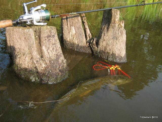 народные хитрости для рыбалки