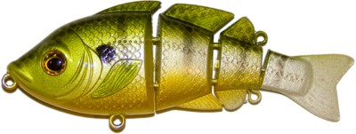 Revolution Bluegill