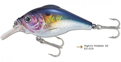 Highfin Wobbler